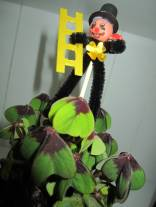 Gluecksbringer-Gluecksklee-t in Glücksklee - Glücksbringer für Silvester